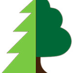 sibirske-drevo-logo